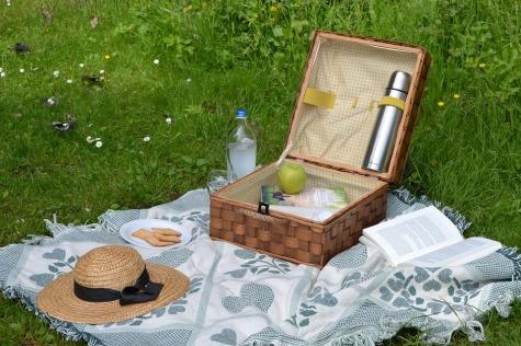 picnic-2171692_960_720